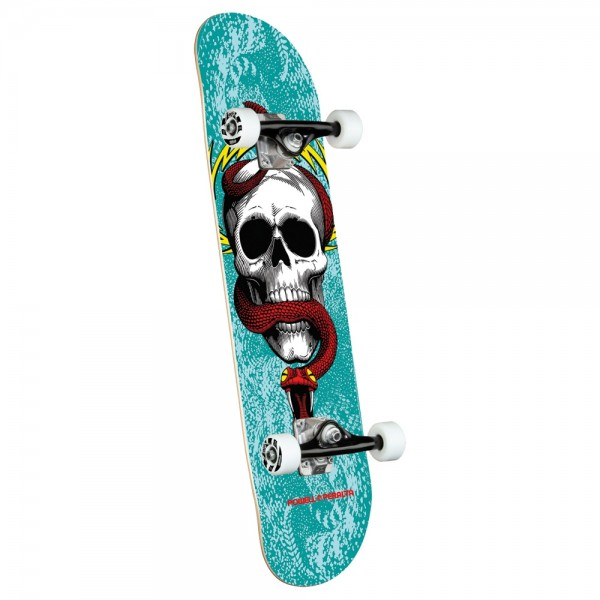 Board Complete Powell Peralta Skull & Snake Turquoise